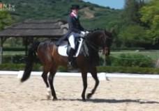Dos Lunas Dressage Competition – Sotogrande, Spain – June 2013